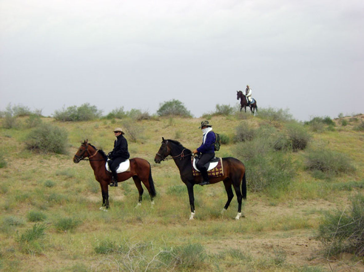 Akhalteke Horse Riding Tour In Turkmenistan Desert